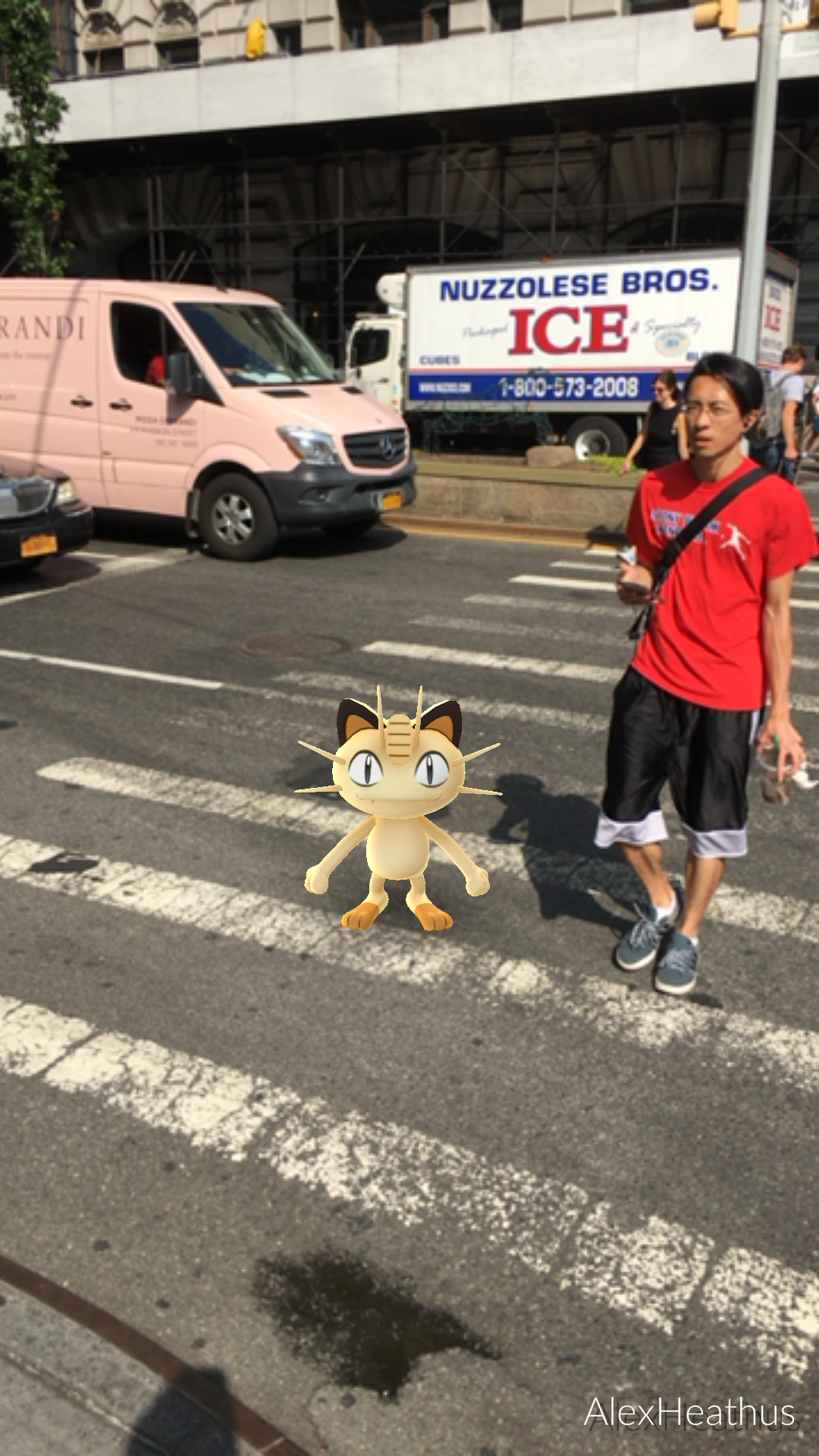 as-was-the-meowth