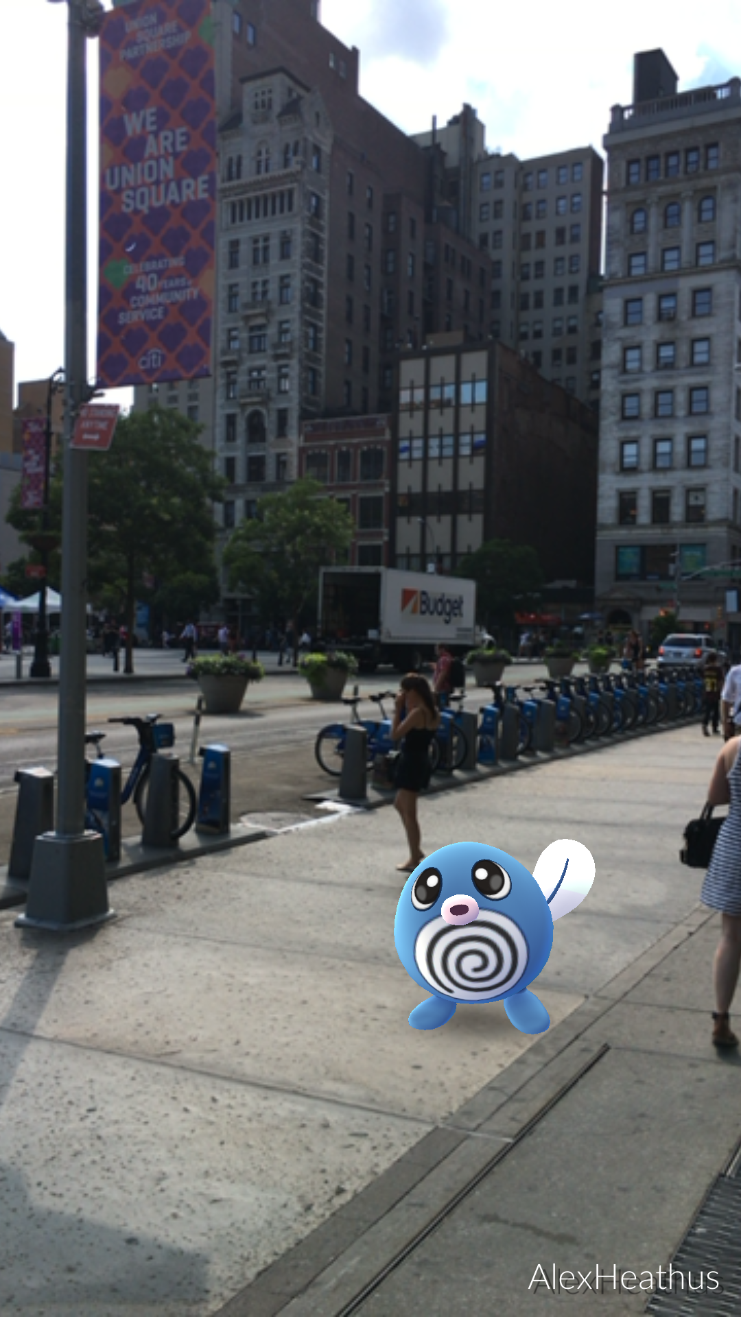 the-poliwag-was-exactly-where-the-map-said-it-would-be
