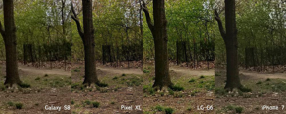 So sánh chất lượng camera: Galaxy S8 với iPhone 7, Google Pixel XL, và LG G6